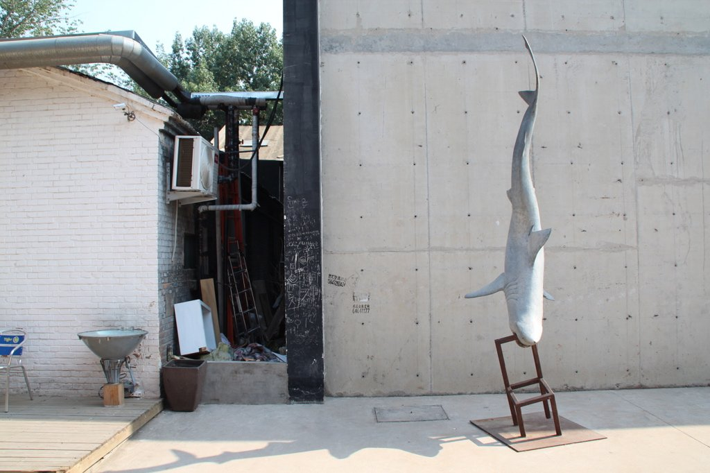 798-art-zone-beijing-peking-shark